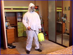 Качественное уничтожение муравьев в квартире