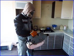 Уничтожение тараканов на кухне