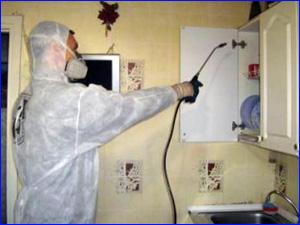 Дезинфекция от тараканов на кухне