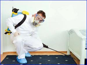Уничтожение тараканов в спальне и комнатах