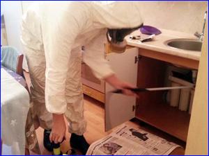 Обработка квартиры и кухни от насекомых